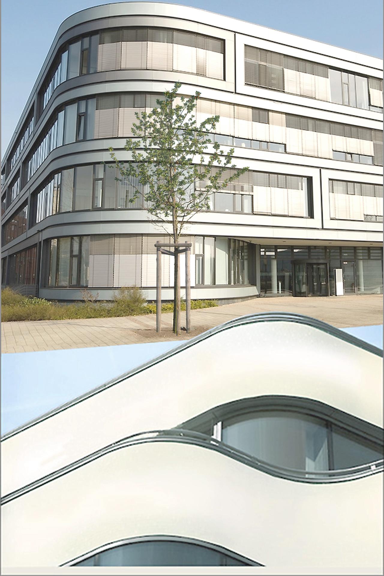EID (Wohnbauten + Wettbewerbe und Entwürfe + Gewerbebauten) Urbane Mischung